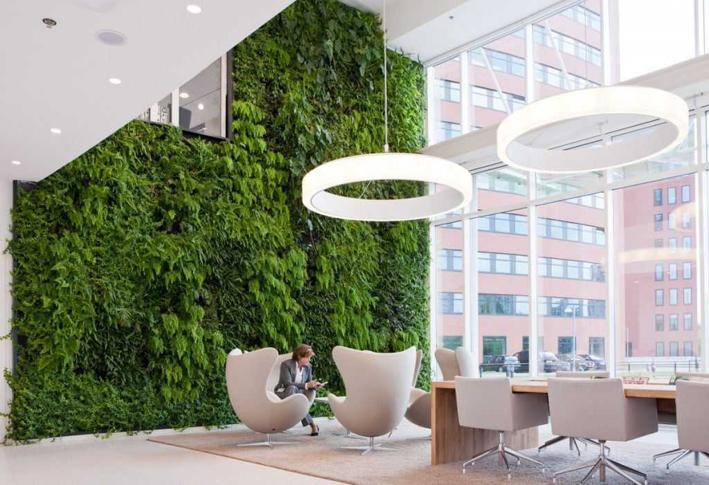 Planten Op Kantoor : Het kantoor als tuin de voordelen van planten op kantoor rever