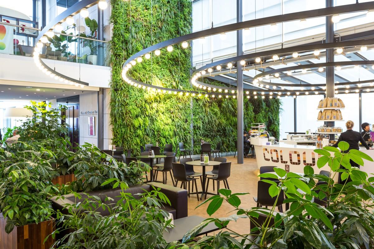 Het Kantoor Als Tuin De Voordelen Van Planten Op Kantoor